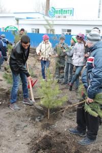 акция Сохраним лес живым